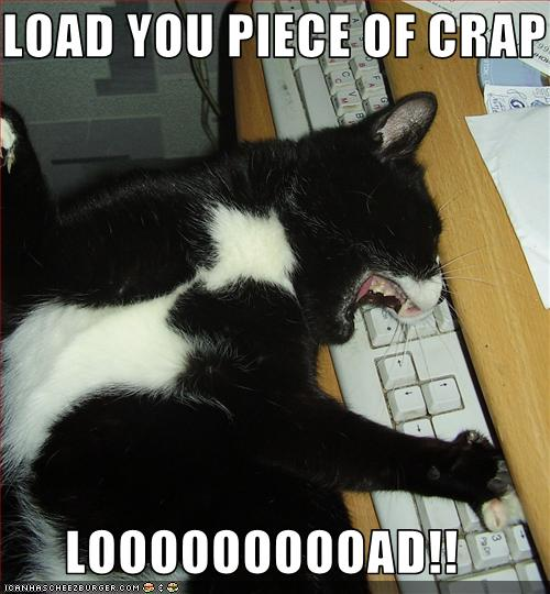 funny-pictures-cat-waits-for-program-to-load